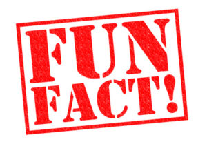 FUN FACT! red Rubber Stamp over a white background.